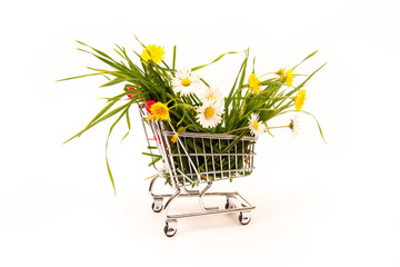 Cart with grass and flowers. Spring purchases concept