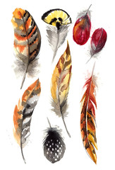 Feathers painted with watercolors on white background. Watercolor color beautiful feathers. Abstract background with feathers, spray paint on a white background.