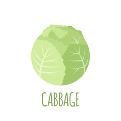 Cabbage icon in flat style on white background