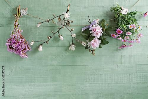 Sfondo Primavera Con Fiori Appesi E Legno Verde Pastello Stock