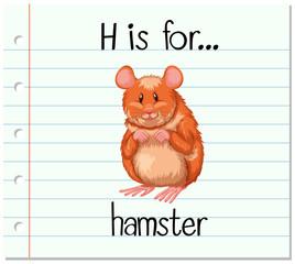 Flashcard letter H is for hamster