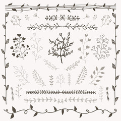 Hand drawn floral design elements