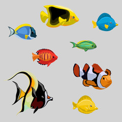 Collection of tropical and deep-sea fish