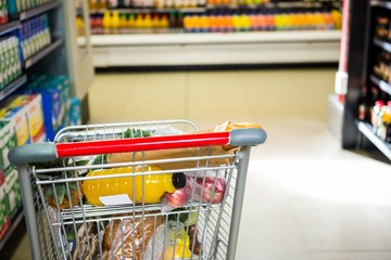 View of filled shopping cart