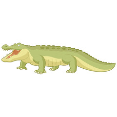 Cartoon green alligator