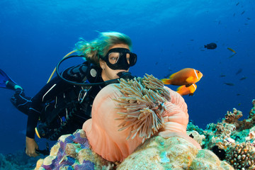 DIVER VS ANEMONEFISH 1