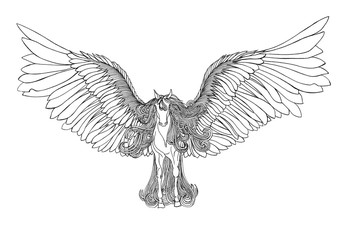 Beautiful Horse with mane and wings.Pegasus. Drawning by pen .C