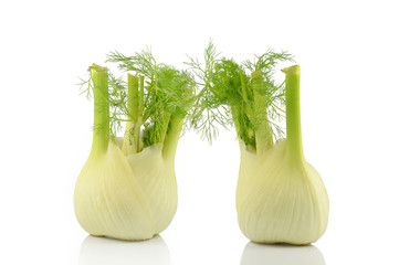 two isolated fennel