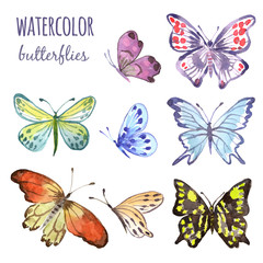 Butterfly, watercolor illustration. Vector set isolated of butterflies on white background.
