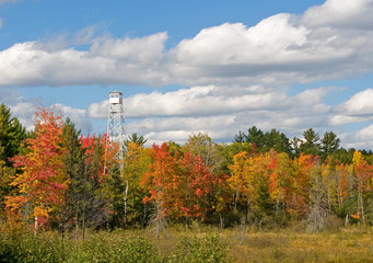 Wall Mural - Autumn Fire Tower