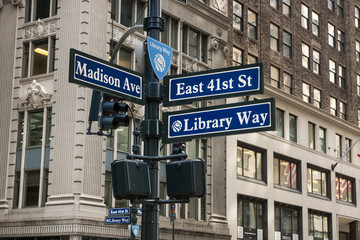 Medison Ave & Library Way