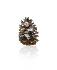 Diamond rings nestled into a pinecone isolated on white