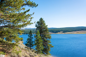 Meadowlark Lake and Trees