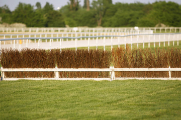 Empty race track for horse racing summertime
