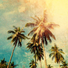 Forest Tropical Palm Trees Jungle Vintage Shabby