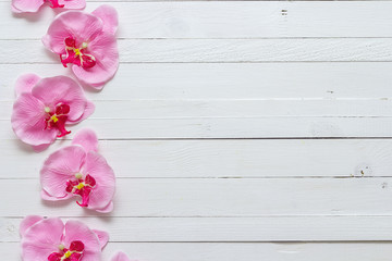 Background with flowers pink orchid on painted wooden planks. Pl