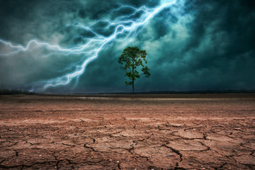 Land to the ground dry cracked and big tree. With lightning stor