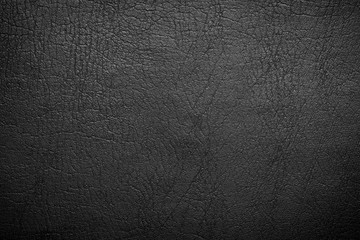 Search Photos Category Graphic Resources Textures Leather
