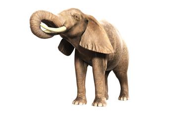 Freigestellter Elefant mit erhobenem Rüssel (gerendertes Bild)