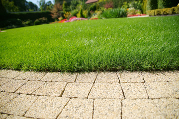 Beautiful lawn and path