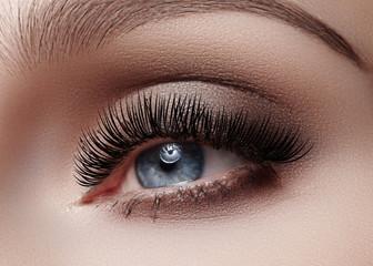 Beautiful macro shot of female eye with classic smoky makeup. Perfect shape of eyebrows, brown eyeshadows and long eyelashes. Cosmetics and make-up