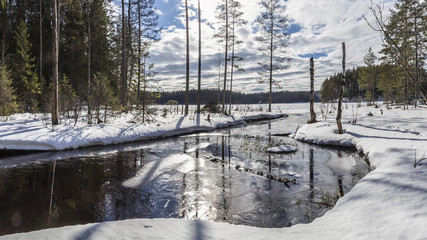 panorama of snow-covered landscape of winter forest and the river, which flows into the lake at sunny day
