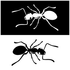 Ant icon vector image