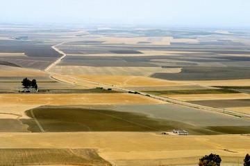 The road from Sevilla to Carmona