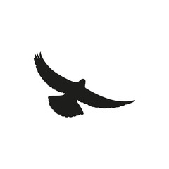 Simple black one dove symbol. Wingspan is pigeon