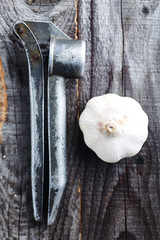 Garlic bulb and garlic press on the dark background