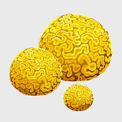 Yellow underwater sponge, polyps in form of brains