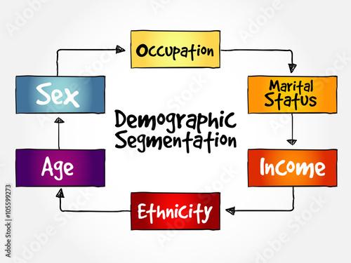 nestle demographic segmentation