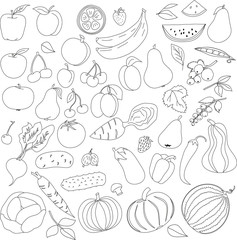 pencil pattern of fruit and vegetables