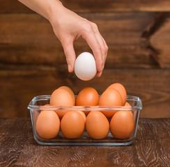 hand holding an egg