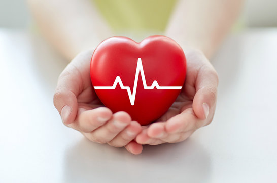 close up of hand with cardiogram on red heart
