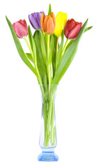 colorful tulips in a glass vase