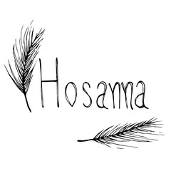 Hosanna with plam leaf hand drawn illustration
