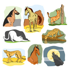 Vector set of wild and home animals. Hand drawn cartoon illustration. Horse, dog, cat, wolf, leopard