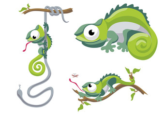 Illustration of chameleon in different situations