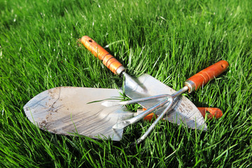 Garden major and minor hand trowels and a flower rake on the fresh lawn in the garden