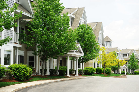 modern apartment buildings with spring green trees