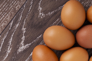 the brown chicken eggs