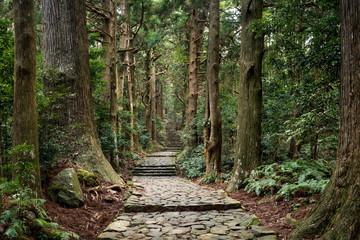 Daimon zaka in Kumano, Wakayama Japan