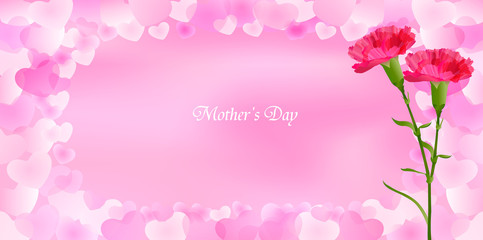 母の日 カーネーション 花 背景