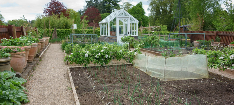 Greenhouse in English country garden
