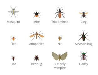 Insect parasites .