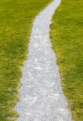 Grass and stone path. Green and grey texture. Can be used as background