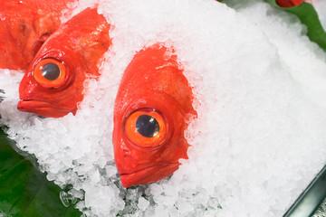 Kinmedai fish (Splendid alfonsino).