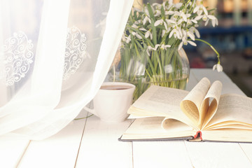 White crocus with open book on windowsill background