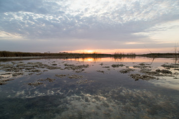 beautiful sunrise of the sun on the lake